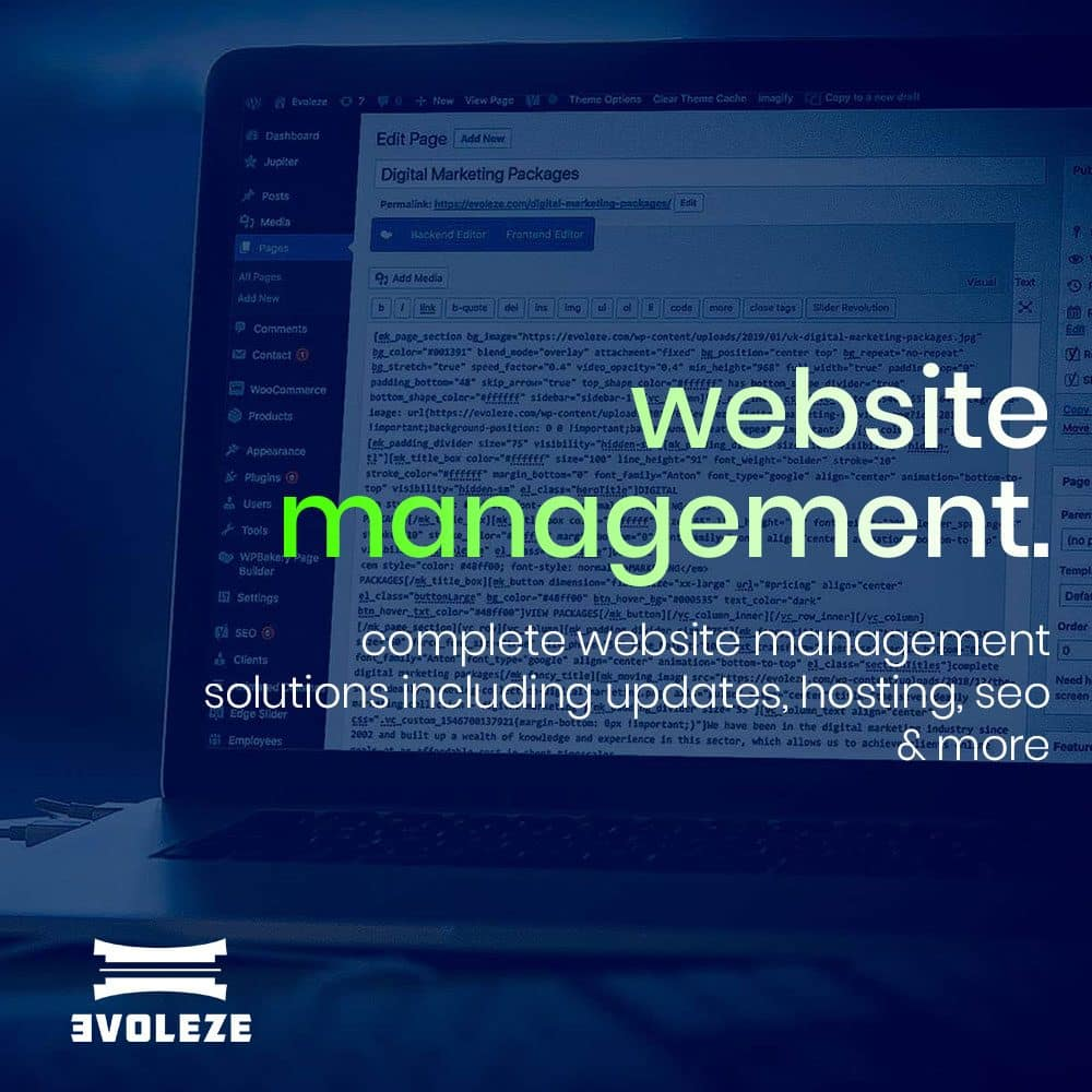 website management prices