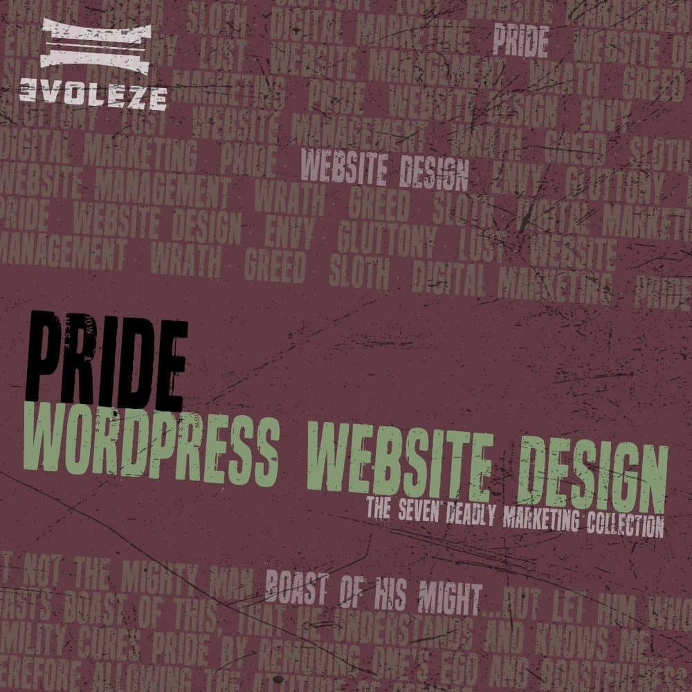wordpress website design package